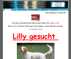 King Award Screenshot Lilly gesucht