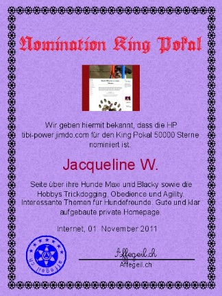 King Award Nominationsurkunde Tibi-Power